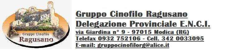 www.gruppocinofiloragusano.it